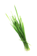 Wheat Grass On White Backgroun...