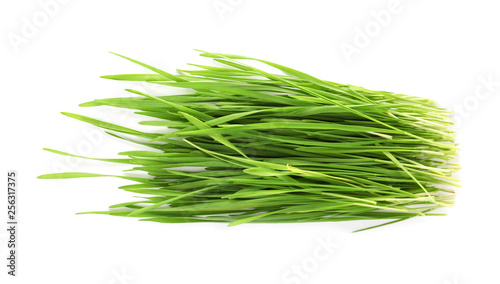 Canvas Print Wheat grass on white background, top view