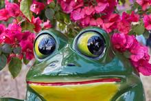 Closeup Of  Ceramic Frog With ...