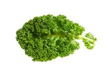 Kale Isolated On White