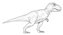Drawing Of Dinosaur - Hand Ske...