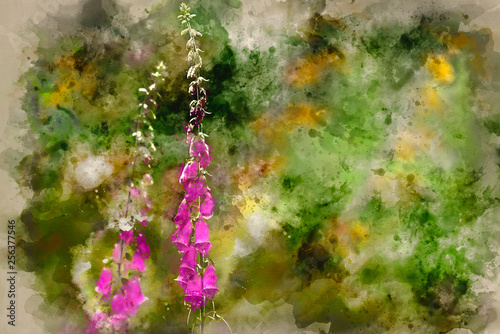 Photo Watercolor painting of Beautiful Summer garden landscape with beautiful foxglove
