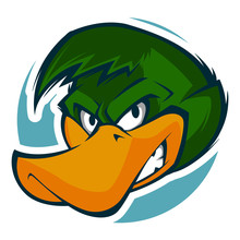 Angry Duck Head Illustration M...