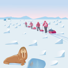 Expedition In The Arctic With ...