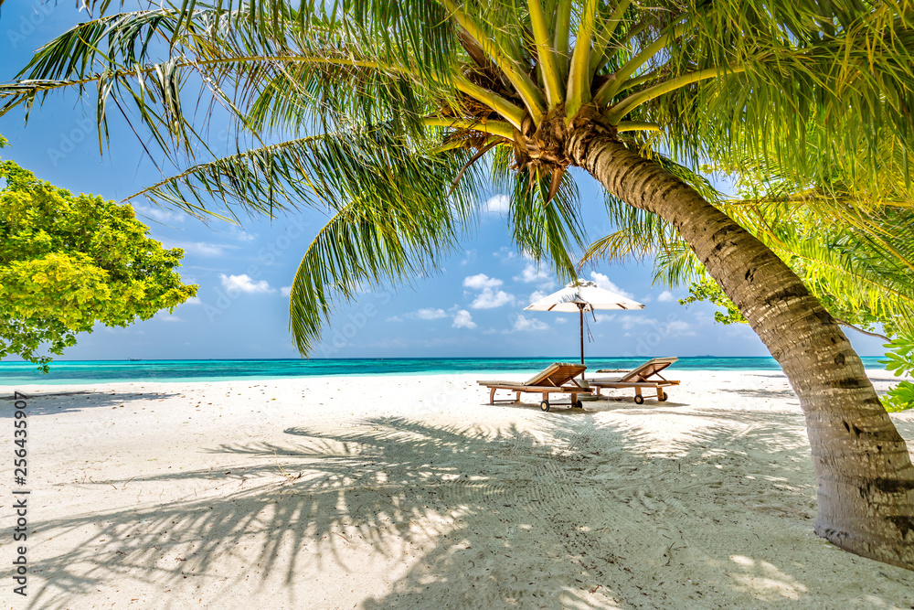 Fototapeta Beautiful beach. Chairs on the sandy beach near the sea. Summer holiday and vacation concept. Tropical beach landscape. Exotic vacation and summer holiday concept design