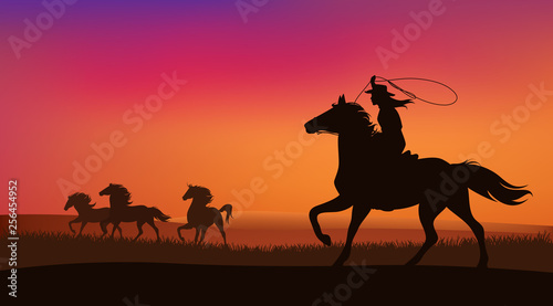 Obraz na plátně beautiful cowgirl chasing a herd of wild mustang horses at sunset - silhouette l