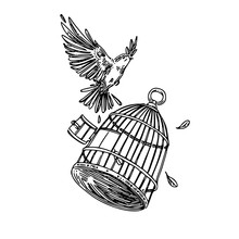 Bird Flying Out Of The Cage. Sketch. Engraving Style. Vector Illustration.