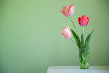 Pink Tulips On Green