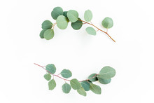 Wreath Frame Made Of Branches Eucalyptus And Leaves Isolated On White Background. Lay Flat, Top View