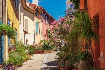 Fototapeta na wymiar street with houses and flowers