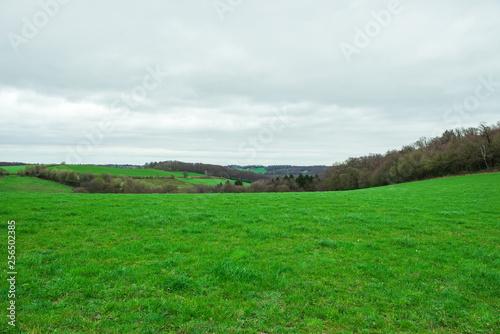 Deurstickers Groene Bauernhof und Anbau