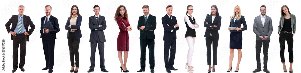Fototapeta group of successful business people isolated on white