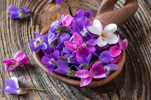 Wood violet flowers on a wooden spoon Obraz na płótnie