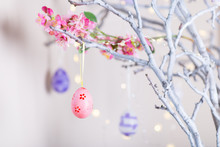 Decorated Colorful Easter Egg Hanging On Tree Branch Indoor With Warm Bokeh On White Background.