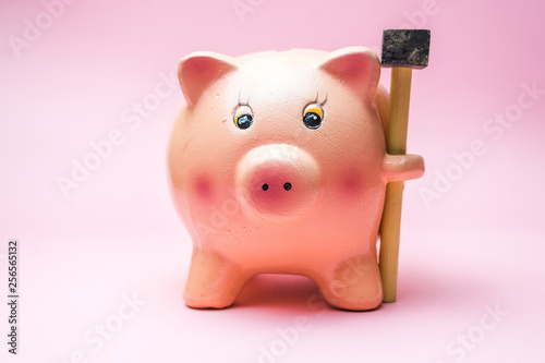 Fotografía  Piggy Bank with small Hammer isolated on pink