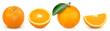 Leinwandbild Motiv orange isolated on white