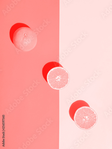 Whole halved ripe juicy orange toned in pink gradient duotone background arranged in diagonal Canvas Print