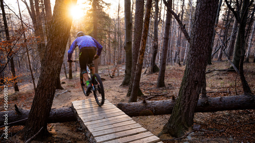 Fotomural Mountainbiker rides in autumn forest