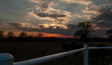 Sunset On The Farm With Fencing