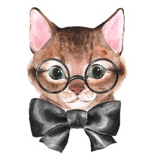 Cute Cat With Black Bow. Hand Painting Watercolor Illustration