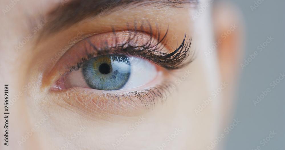 Fototapeta Macro close up of beautiful female blue eye with perfect natural makeup looking  in camera.
