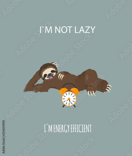 Cuadros en Lienzo The story of one sloth