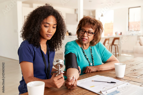 Fotografie, Obraz  Female healthcare worker checking the blood pressure of a senior woman during a
