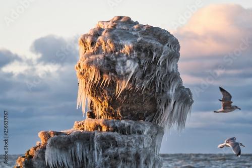 Fotografie, Obraz  Icy rocks at sunset.