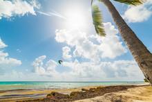 Kite Surfer In Pointe De La Sa...