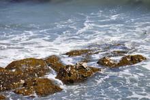 The Tide Comes In