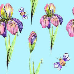 beautiful pink flowers ,bee, iris,on a white, hand drawn