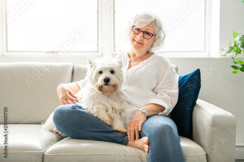 Fototapeta The Therapy pet on couch next to elderly person in retirement rest home for seniors obraz