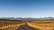 canvas print picture - Little karoo in South Africa, road  and moutain in the back