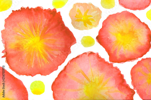 Watercolor background illustration - 256703970