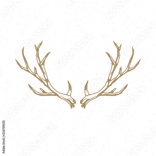 Photo Deer horns hand drawn logo emblem template vector vintage design