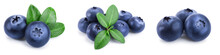 Fresh Blueberry With Leaves Is...