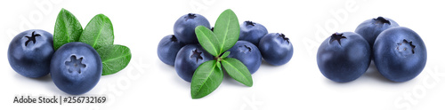 Fényképezés fresh blueberry with leaves isolated on white background closeup