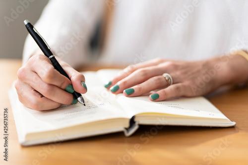 Obraz na plátně escritor