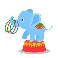 Funny Baby Elephant Performs I...