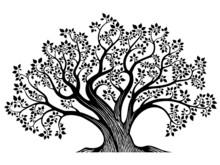 Tree-B&W