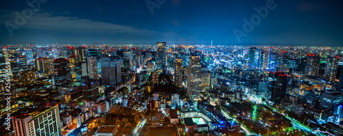 Foto auf Leinwand Blaue Nacht city skyline aerial night view in Tokyo, Japan