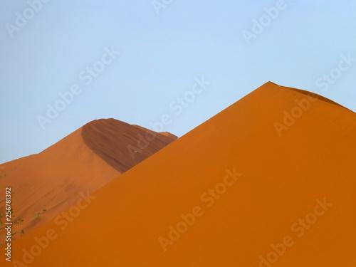 Poster Corail Dune, Sand, Desert, Windhoek, Namibia, Africa