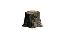Single Tree Stump - Isolated On A White Background