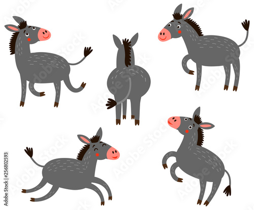 Photographie Donkey vector characters set