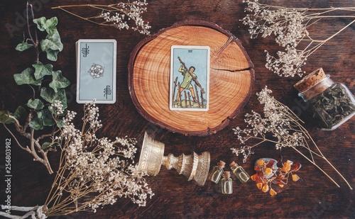 7 of wands tarot card on a nature display Canvas Print