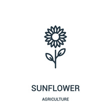 Sunflower Icon Vector From Agriculture Collection. Thin Line Sunflower Outline Icon Vector Illustration. Linear Symbol For Use On Web And Mobile Apps, Logo, Print Media.