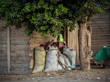 The Family Of This Poor Girl Lives In Her Wooden Hut In The Center Of The Capital Of Egypt-Cairo. Instead Of Hijab, She Uses A Plastic Bag, Because She Has No Money Even For Food