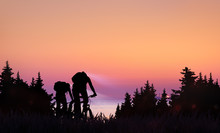 A Couple Ride Bicycles On Sunset In Forest