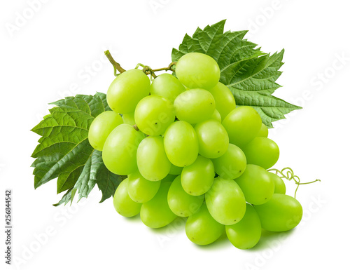 Green grapes with leaves isolated on white background Fototapete