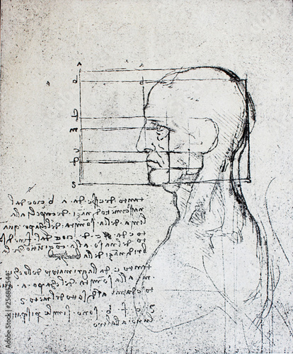 Photo  Proportions of head with notes  by Leonardo Da Vinci in a vintage book Leonard d